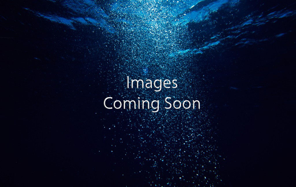 Images_Coming_Soon_Landscape_1024x647