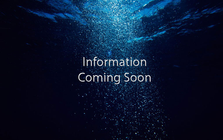 Info_Coming_Soon